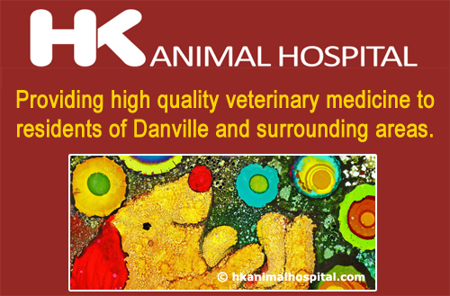 hk-animal-hospital-logo_featured